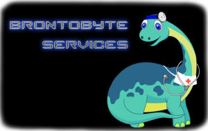 computer services frankston